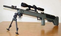 Снайперская винтовка TEI M89-SR